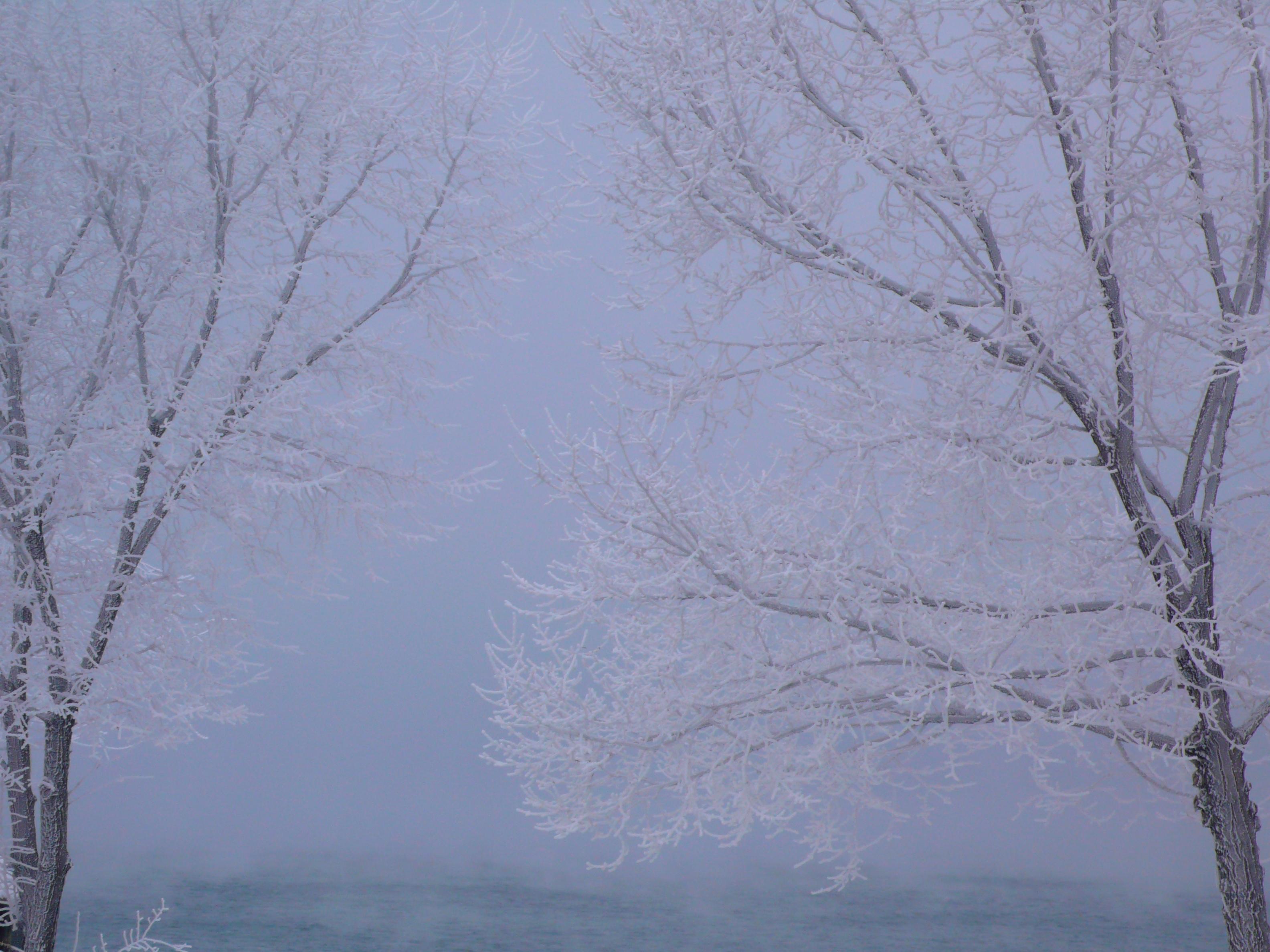7 Winter Scenes for Winter Solstice | FranGallo's Blog
